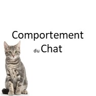 joeldehasse formation chat